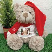 Photo Christmas Bear Shaggy Brown