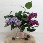 Birthday Everlasting Flower Arrangement - Lavender Blue Lilac