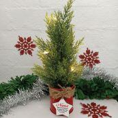 Christmas Tree Artificial Cyprus Pine LED Lights - Nana
