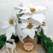 Christmas Poinsettia Potted 6 Artifical Flowers White