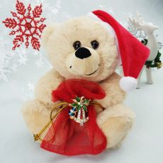 Christmas Bear with Brooch and Gift Bag
