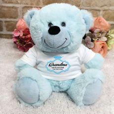 Grandma Personalised Teddy Bear - Light Blue