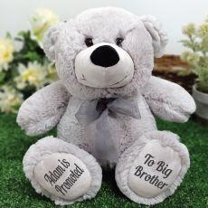 Big Brother Teddy Bear 30cm Silver Grey