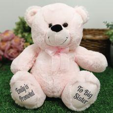 Big Sister Teddy Bear 30cm Light Pink